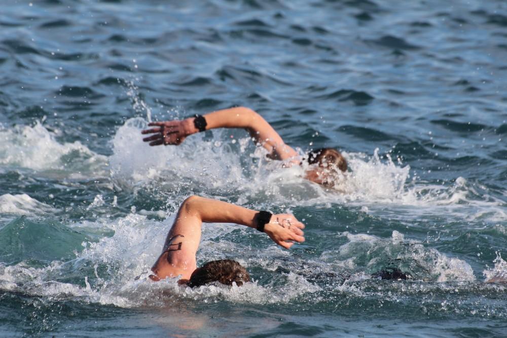 Чемпионат по плаванию на открытой воде
