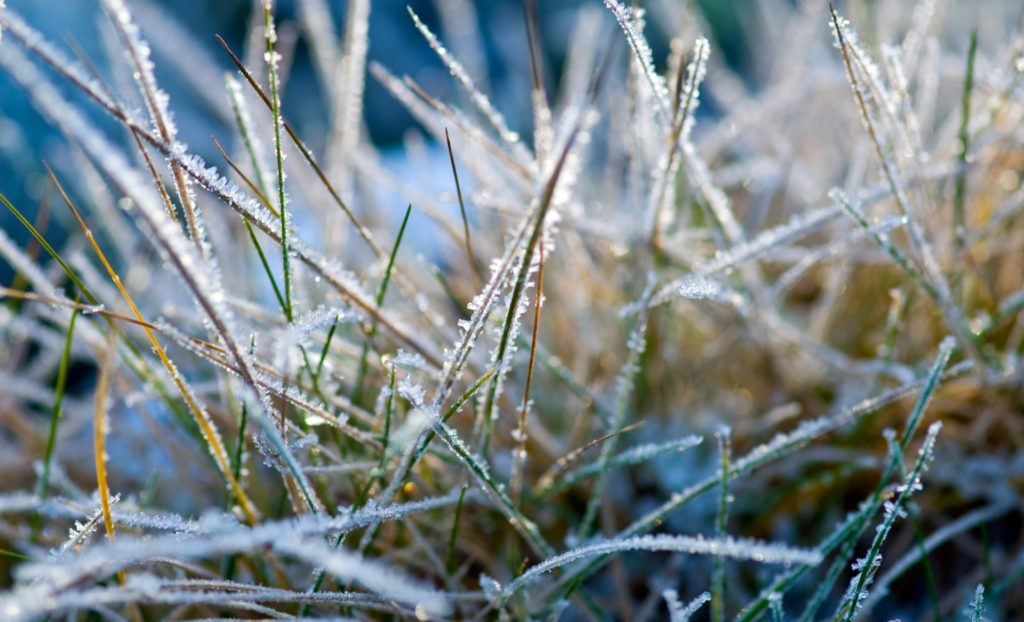 В Сибири холодные погода с заморозками