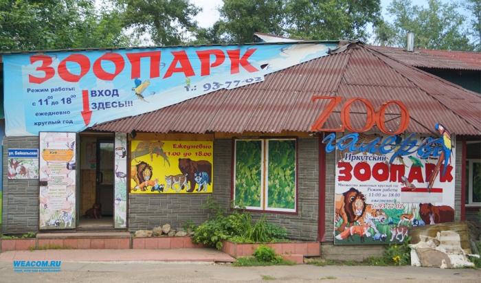 В Иркутске зоогалерея