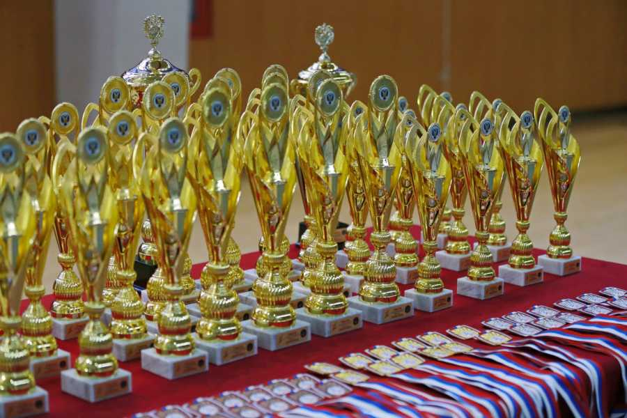 Медали Вольная борьба Спартакиада учащихся