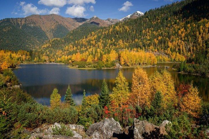 Совет Федерации одобрил вырубки леса на Байкале
